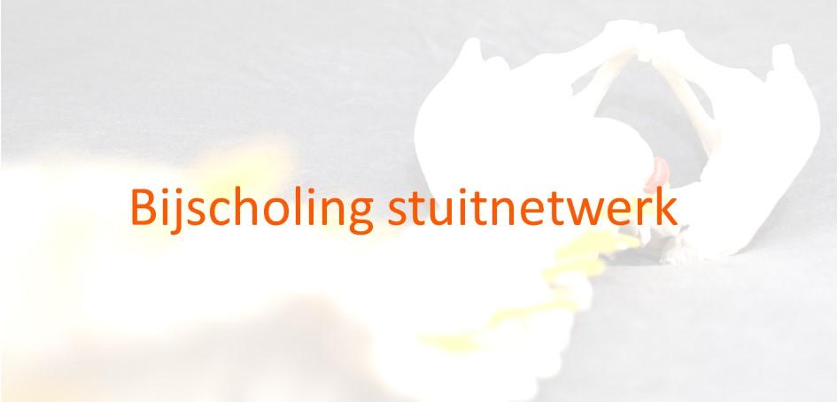 Bijscholing stuitnetwerk_image